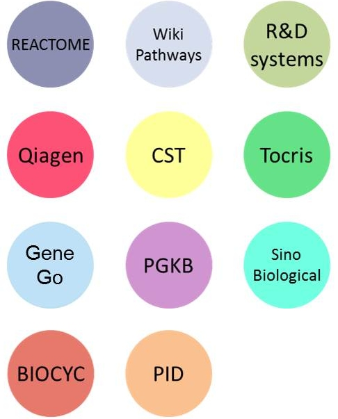 PathCards :: PEDF Induced Signaling Pathway And Related